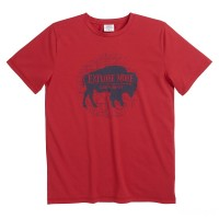 best price carhartt ca8946 - force explore more tee boys tango red last chance limited sale