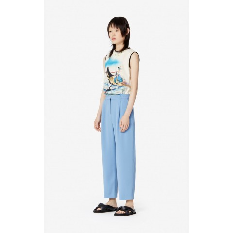 limited sale pleated trousers - blue last chance best price